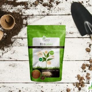 Naravno gnojilo Big plant – 500g