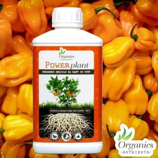 Organsko gnojilo POWER PLANT – 500 ml