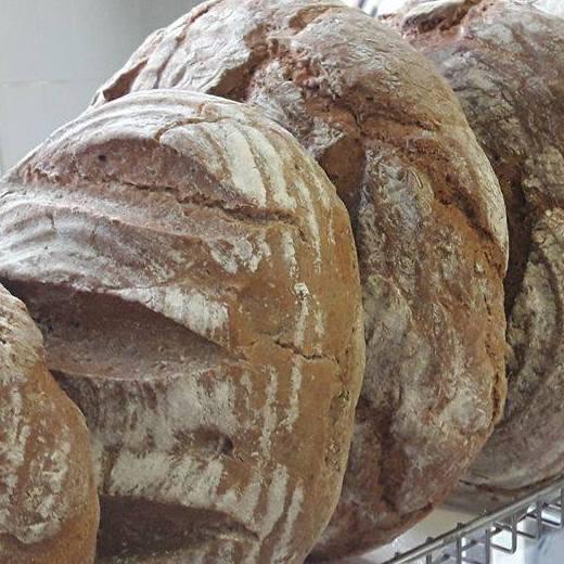 Domači beli mlečni kruh – hlebec – cca 1kg